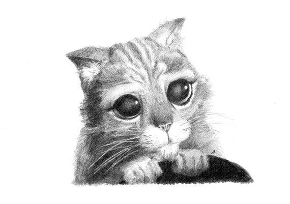 Dibujo A Lápiz Original El Gato Con Botas Etsy