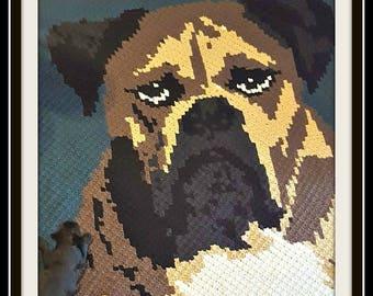 British Bulldog Afghan, C2C Crochet Pattern, Written Row Counts, C2C Graphs, Corner to Corner, Crochet Pattern, C2C Graph