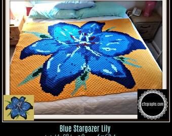 Blue Stargazer Afghan, C2C Crochet Pattern, Written Row Counts, C2C Graphs, Corner to Corner, Crochet Pattern, C2C Graph