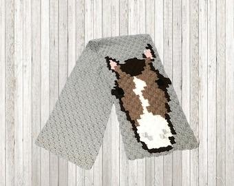 Horse Scarf, C2C Crochet Pattern, Written Row Counts, C2C Graphs, Corner to Corner, Crochet Pattern, C2C Graph