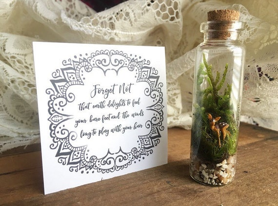 FOREST FAWN Mini Living Terrarium Curio shelf decor
