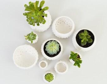 Modern Spiky Planter White Ceramic Bowl ~ Porcelain Ring Dish Air Plant Holder~ White Modern Planter Beach Decor Coastal Minimalist Ceramics