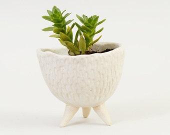 Textured White Modern Planter ~ Handmade Ceramic Planter Cactus Planter ~ Succulent Planter Plant Pot ~ Minimalist White Planter Ceramics UK