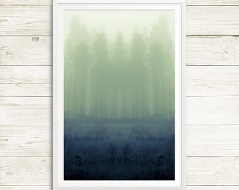 Foggy forest posters, large forest art, zen forest art, foggy forest art, foggy forest photos, foggy forest prints, large tree posters