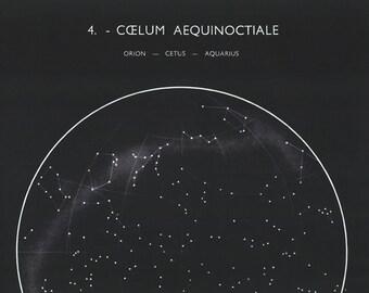 1950's Orion, Aquarius, Cetus Constellations Original Vintage Star Chart Space Astronomy Plate (ref4)