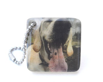 Personalized Pet Keychain - Pet dad personalized - Dog lover gift - Pet memorial keychain - Photo Keychain - Pet Gift