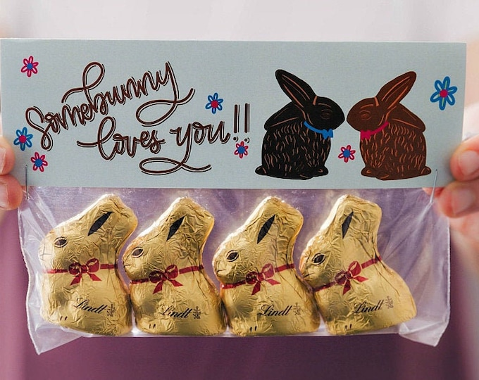 Somebunny Loves You! - Printed Bag Toppers for Snack Size Baggies