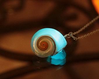 Pearly White Seashell  Pendant / Glow in the Dark / Natural Seashell / Sea Theme /