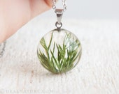 Juniper necklace. Stainless steel chain. Real Juniper pendant. Unique Resin jewelry. Junipers birthday gift. Anniversary gift Juniperus