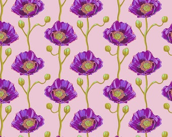 Bright Eyes by Anna Maria Horner for Free Spirit - Cheering Section - Blush - FQ BTHY Yard - Cotton Quilt Fabric 9-21