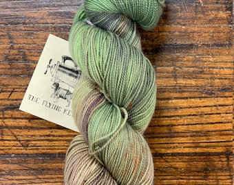 Forage Glider by The Flying Kettle - Skein of Hand-Dyed Fingering Weight Merino Wool Nylon