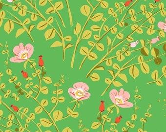 Heather Ross 20th Anniversary Reprint Windham Fabrics - Green Nanny Bee Briar Rose - Cotton Quilt Fabric FQ BTHY Yard 921