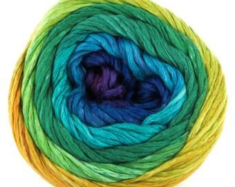 Cumulus Rainbow by Juniper Moon Farm - worsted weight yarn - Color: 201 Aurora Borealis  - Dye Lot 829