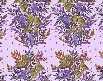 Bright Eyes by Anna Maria Horner for Free Spirit - Visitation - Lilac - FQ BTHY Yard - Cotton Quilt Fabric 9-21