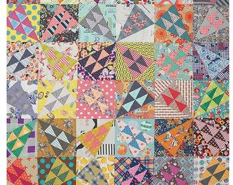 A Wild Ride Quilt Pattern by Jen Kingwell Designs