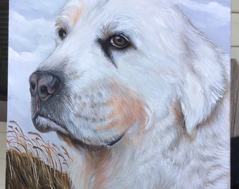 Pet Portraits ~ Now taking Commissions! Check it out ~ Canvas Paintings