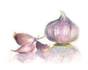 Watercolor Garlic, Garlic Print, Garlic Art, Kitchen Art