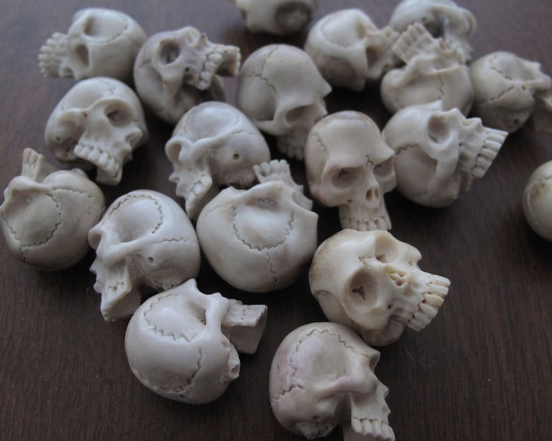 NOT Drilled Carved  Deer Antler Jawless Skull Jewelry making Supplies  S7584