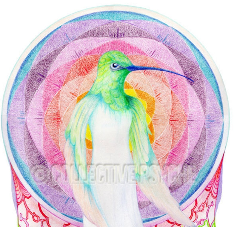 Hummingbird of Light  4 x 6 Blank Card image 0