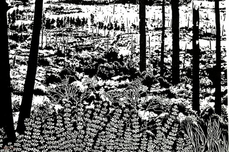 Process of Succession Yosemite Linocut Relief Print 24 x 18 image 0