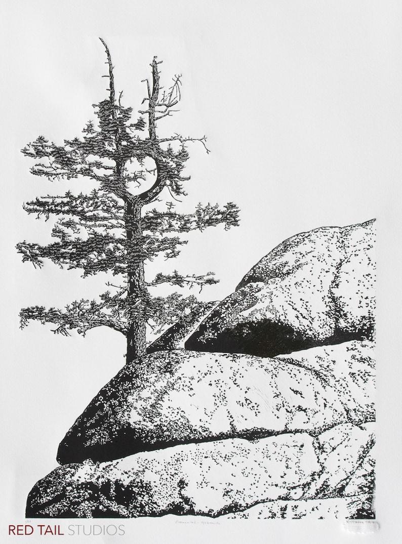 Elemental  Yosemite Fine Art Linocut Print 24 x 18 Black & image 0