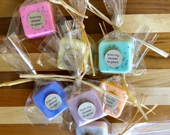 CUSTOM Colors: Personalized Wedding Favors, Bridal Shower Favors, Baby Shower Favors customize with color and labels