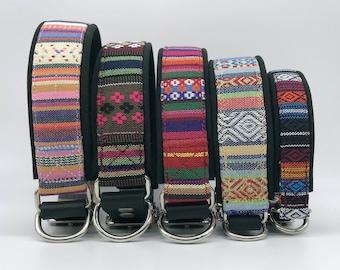 Adjustable Dog Collar, brightly colored boy + girl dog collar