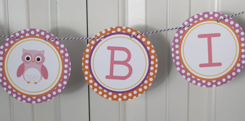 SWEET OWL ... OWL Theme Birthday or Baby Shower Party Banner Pink Brown
