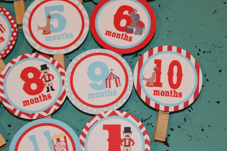 12 months VINTAGE CIRCUS 1st Birthday Photo Clips Banner Newborn Party Packs Available
