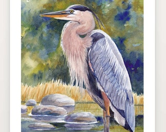 Large Great Blue Heron Print on Paper, Choose Right or Left Facing, Watercolor Green Blue Gold Gray Nature Bird Wall Art by Janet Zeh