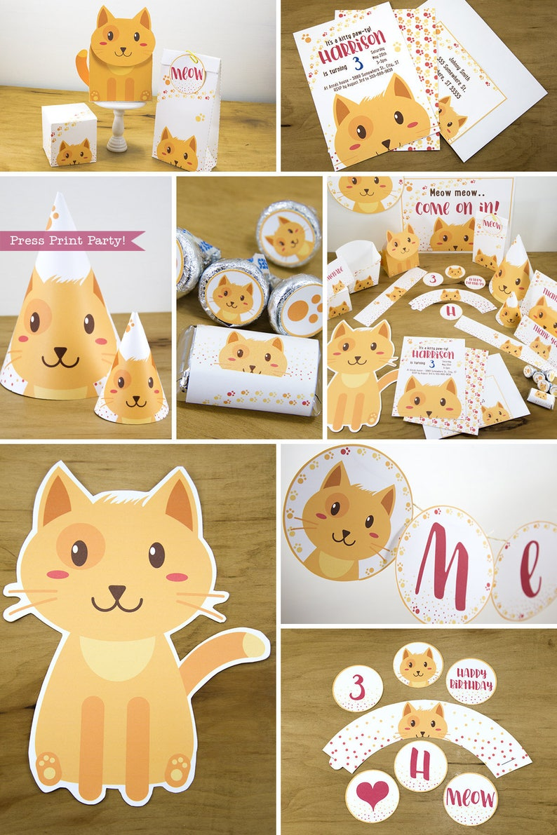 Cat Party Decorations Birthday Decor Pets Invitation