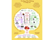 Ring Family Tree Poster 18x24