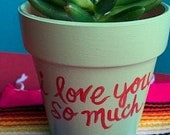 Succulent Pot quot I Love You So Much quot - Austin Mural
