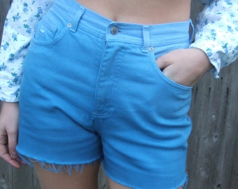 VTG High Waisted Shorts, Up Cycled Shorts, Gentle Ombre Hi Waist shorts, Remade Dyed Shorts