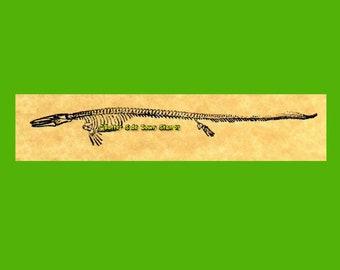 Mosasaur Edestosaurus Skeleton Rubber Stamp