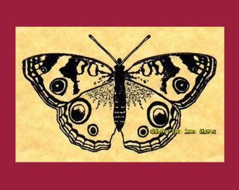 Buckeye Butterfly Rubber Stamp