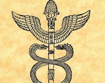 Pharmacy Logo Snake And Moon