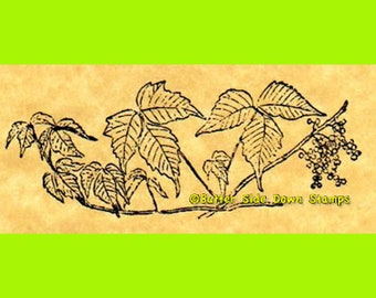 Poison Ivy Rubber Stamp