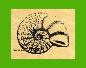 Ammonite Fossil Shell Rubber Stamp (sm)