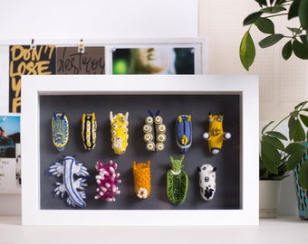 Ocean's eleven - Display box with nudibranch, Ocean creatures in frame, 3d wall decor with sea slugs, Gift for divers and marine biologists