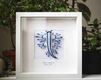 Glaucus atlanticus in frame, miniature needle felt nudibranch sculpture, wool sea slug, gift for divers and marine biologists