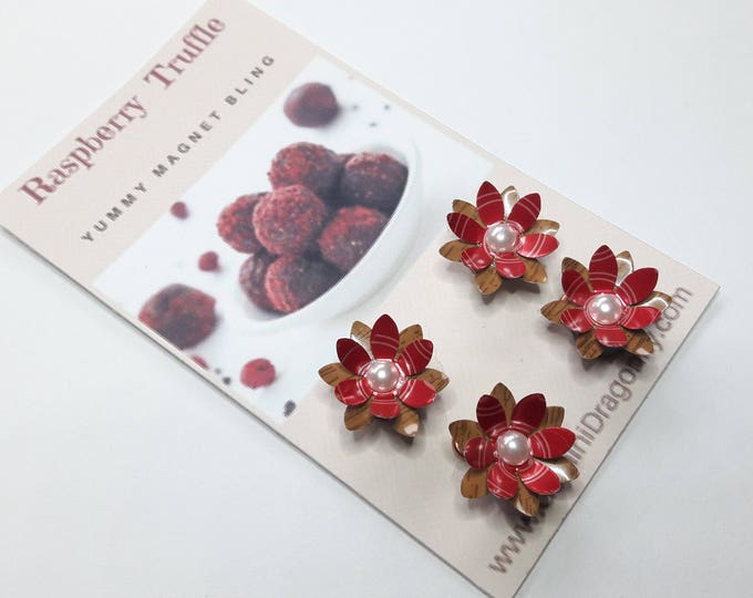 Adorable Flower Magnet Set, Refrigerator Magnets from Upcycled Pop Cans in Raspberry and Chocolate Colors