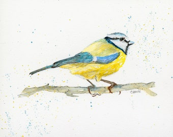 Tufted Blue Tit Watercolor,Fine Art Print, Giclee