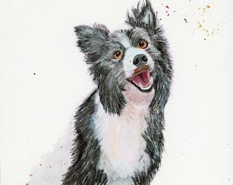 Border Collie Dog Watercolor, Animal Art, Fine Art