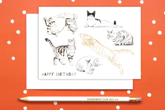 Cat Positions Happy Birthday Greetings Card Observations