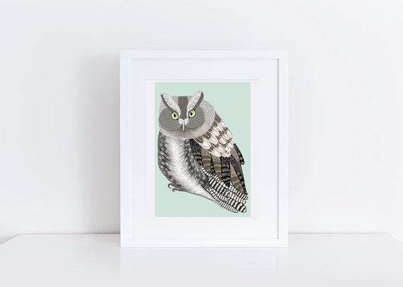 Screech Owl Print / Bird Illustration / 5x7 Original Illustration Print