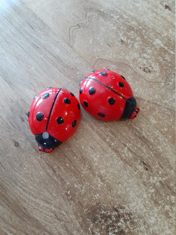 Ladybug salt and pepper shakers