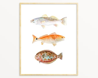 Watercolor Fish Art Print. Texas Grand Slam Red Fish, Speckled Trout, Flounder. Fisherman / Angler/ Dad Gift. Trout Painting. Flounder Art.