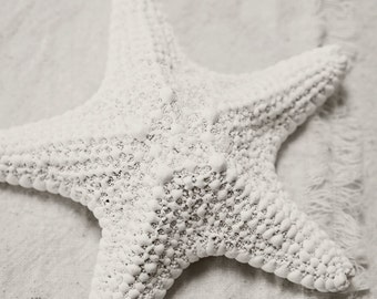Shell Photography - Beach Photograph - Starfish Photo - Minimalist Photo - Starfish - Black & White Print - Neutral Beach Decor