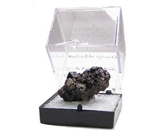 Melanite Garnet Andradite Black Crystal Cluster Thumbnail Mineral, in museum display box, Jet Black and Shiny